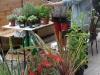 jardineria mini